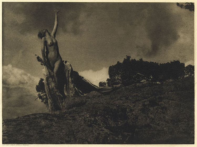 Anne Brigman, Soul of the Blasted Pine, 1907